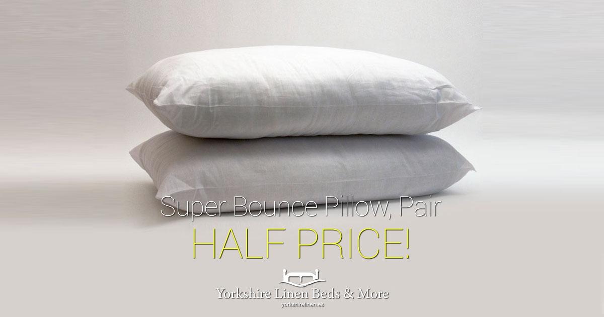 Super Bounce Pillow Pair Half Price OG01