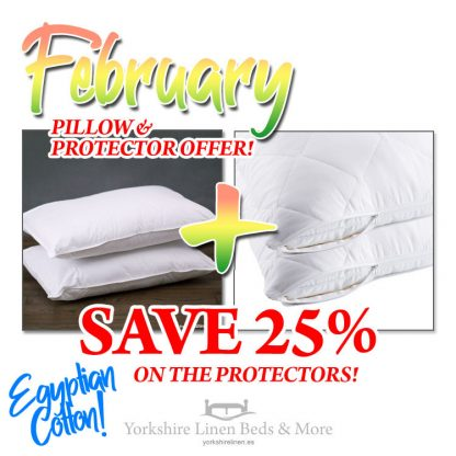 Egyptian Cotton Pillow & Protector, Special February Offer P03