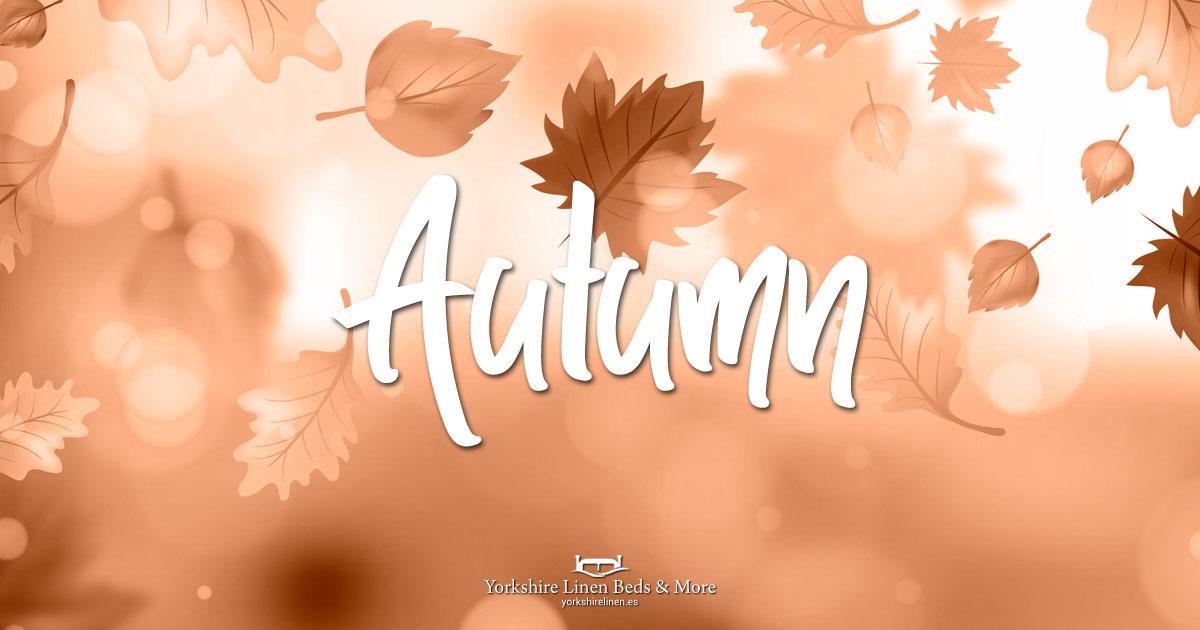 Autumn at Yorkshire Linen Beds & More OG03