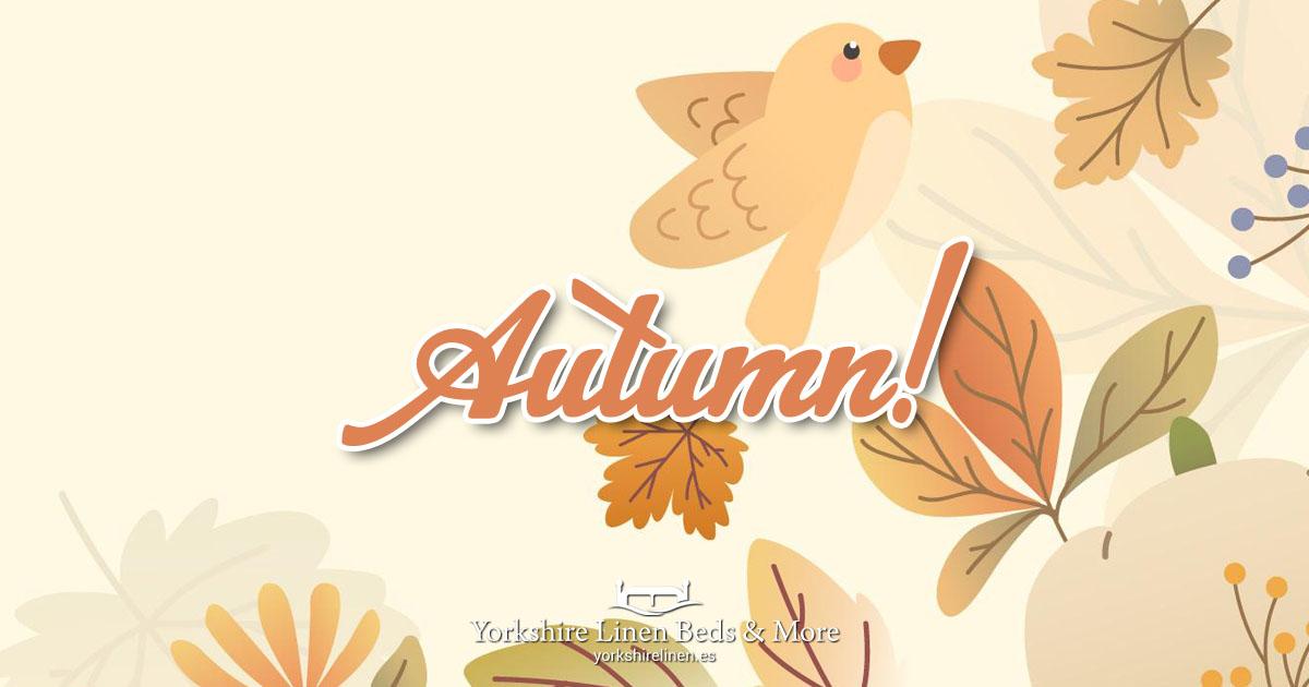 Autumn at Yorkshire Linen Beds & More OG04